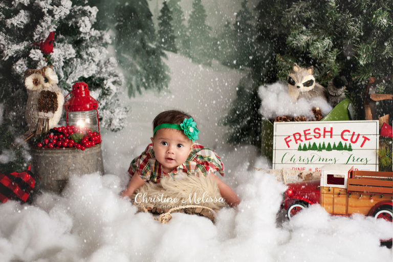 6 month old baby girl on sled at snowy tree farm mini session set