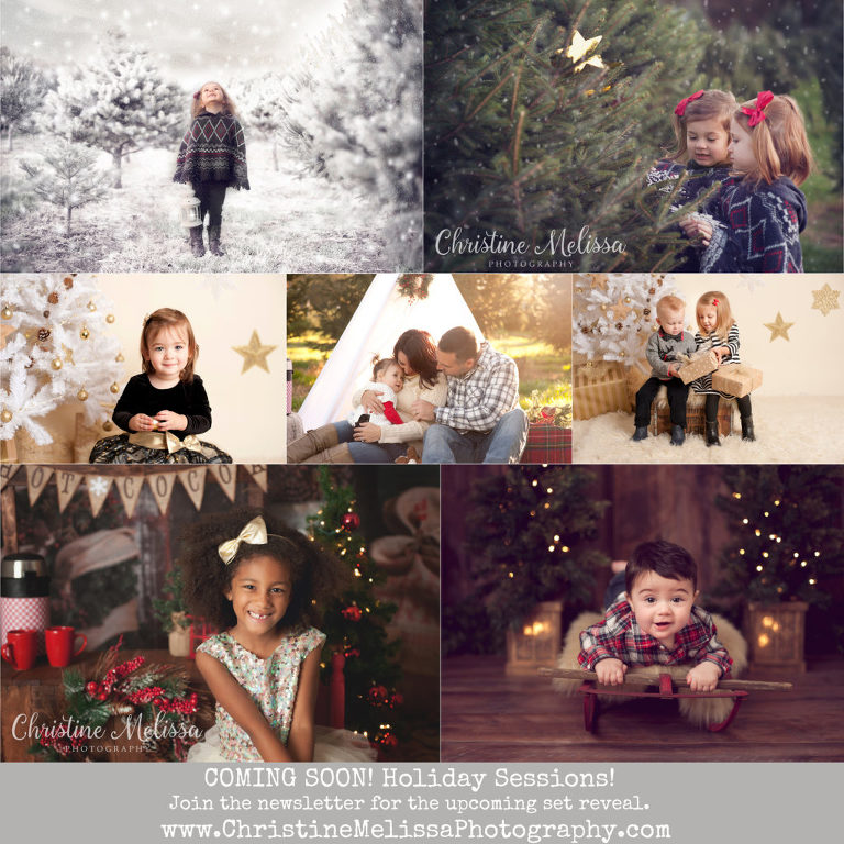 christmas holiday pictures on long island ny in tree farm and studio mini sessions