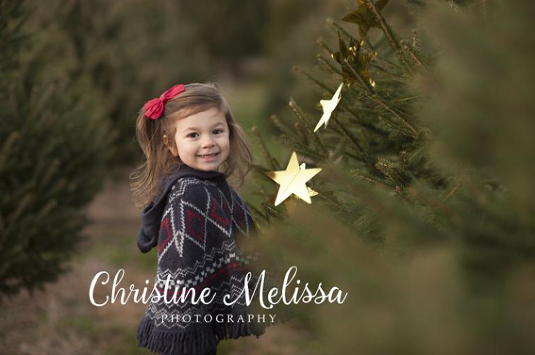 christmas tree farm photo sessions on long island ny
