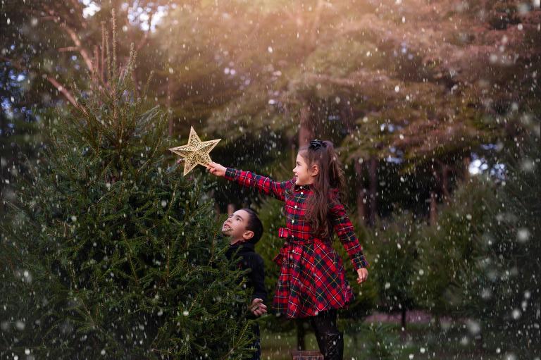 christmas tree farm photo sessions